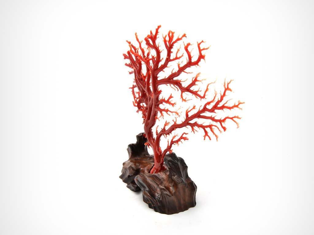 aka红珊瑚摆件 - 古董古玩拍卖